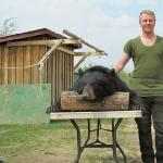 2011 Young Hunter , Old Bear