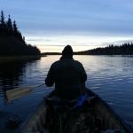 Moose Hunting Morning