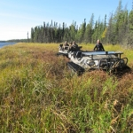 Another Moose Recovery