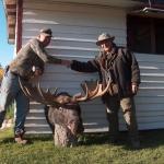 Last Minute Moose